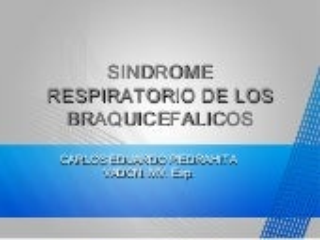 Sindrome braquicefalico