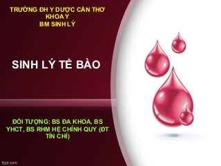 sinhltbovmuhykhoavinh-170606011644-thumb