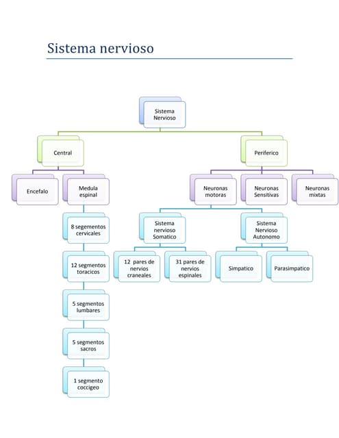 Sistema autónomo