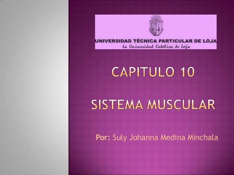 Sistema Muscular Embrio