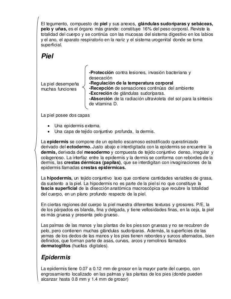 sistemategumentario-170419234503-thumbnail-4.jpg?cb=1492645681