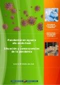 Situación y consecuencias de la pandemia. Gobierno Vasco