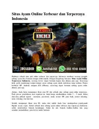 Situs ayam online terbesar dan terpercaya indonesia