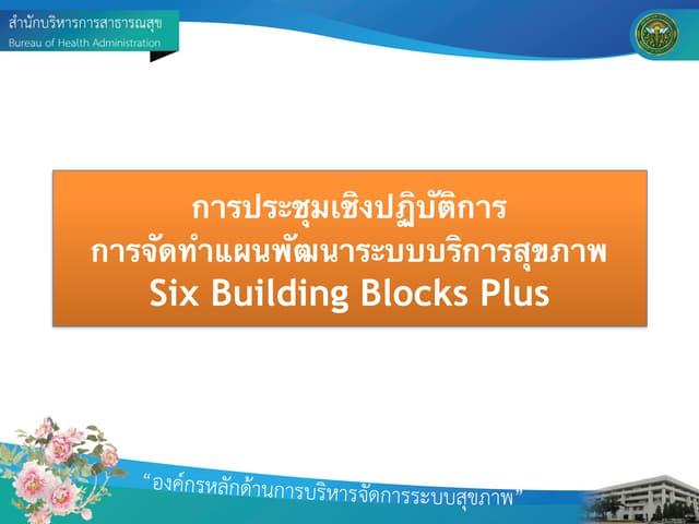 Six Plus Building Block สาขาสุขภาพช่องปาก 2014