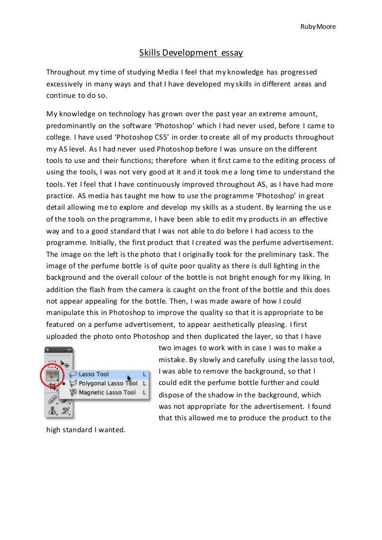 skills development essay