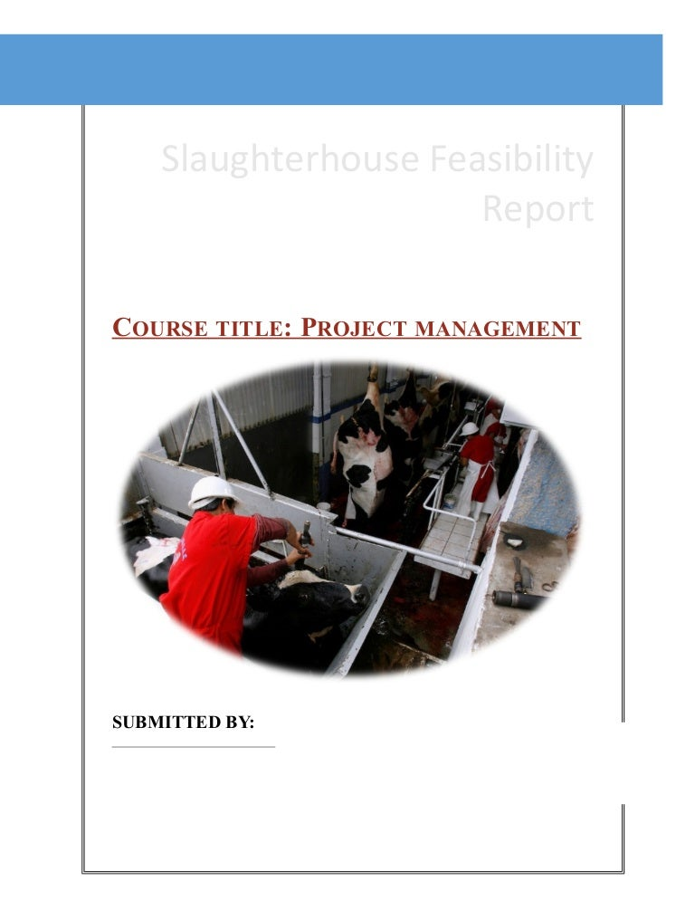 Slaughter house project cost