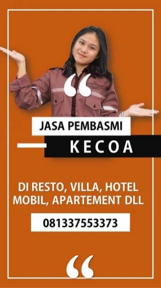 HP: 081337553373 Jasa Anti Rayap di Denpasar