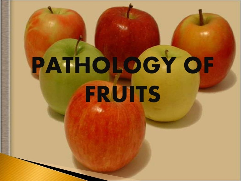 pathology of fruits fruit conservation causes of fruits disease bio