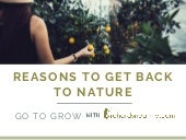 Reasons to get back to Nature