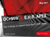 Top 6 Things to Expect From the E.H.R. Apex 2017