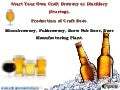 Start Your Own Craft Brewery or Distillery (Startup). Production of Craft Beer. Microbrewery, Pubbrewery, Brew Pub Beer, Beer Manufacturing Plant.