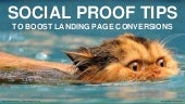Social Proof Tips to Boost Landing Page Conversions