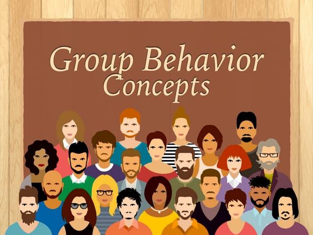 Group Behavior Concepts