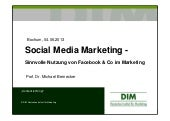 Social Media Marketing 2013 (SMM) Bernecker