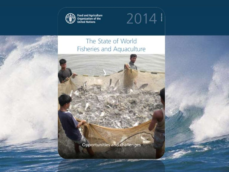 The state of world fisheries and aquaculture sofia sciox Gallery