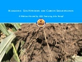 How To Manage Soil Nitrogen and Carbon Sequestration