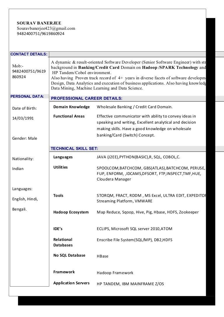 resume Domain Knowledge In Resume sourav banerjee resume