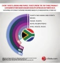 Infographic: South Africa B2C E-Commerce Market 2016