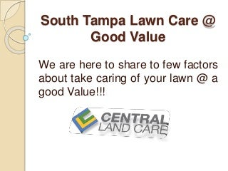 Affordable and Professional South Tampa Lawn care-maintenance Services