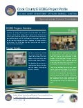 Cook County/Special Leisure Service Foundation EECBG Project Profile