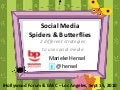 Spiders & Butterflies - 2 Social Media Strategies