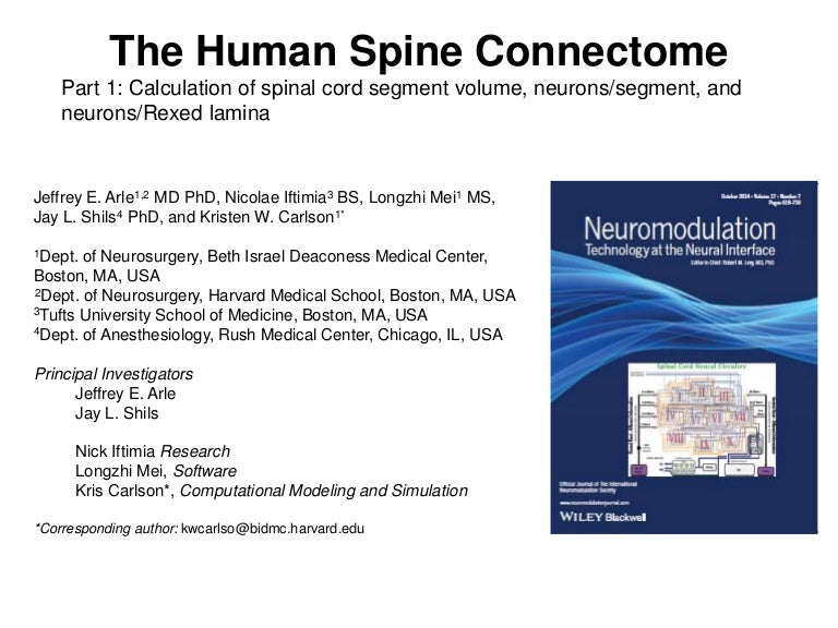 Spinal Cord Connectome Part 1