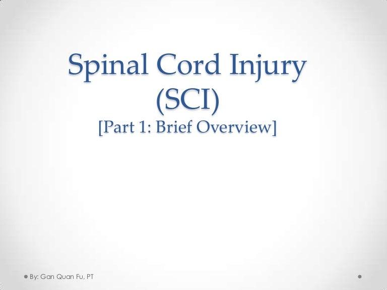 Sci ppt boatremyeaton spinal cord injury sci rehab toneelgroepblik Images