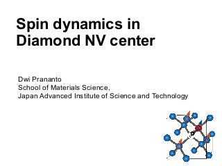 Spin dynamics in diamond NV center