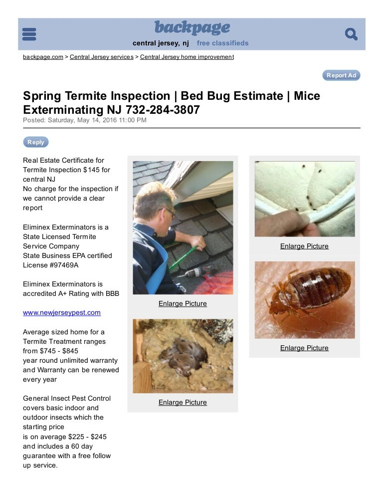 Angies List Termite Inspection Bed Bug Estimate Mice Exterminating Nj  Central Jersey Carpentry_painting Backpage