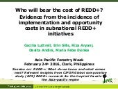 Who will bear the cost of REDD+?