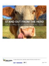 Stand Out From the Herd  - A Sales Professional's Self-Assessment Tool