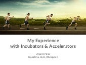 My Experience with Startups, Incubators and Accelerators
