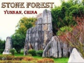 Stone forest in yunnan, china (v.m.)