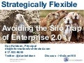 Strategic Flexibility: Avoiding the Silo Trap of Enterprise 2.0