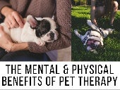The Mental And Physical Benefits Of Pet Therapy
