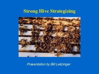 """Strong Hive Strategizing"""