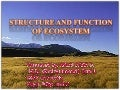 Structure and function of ecosystem 1