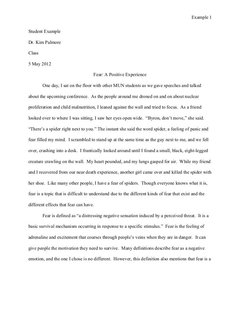 student example essay