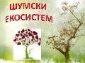 Šumski ekosistem