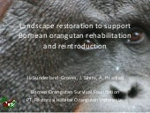 Landscape restoration to support Bornean orangutan rehabilitation and reintroduction