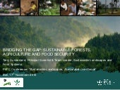 Bridging the gap: sustainable forests, agriculture and food security