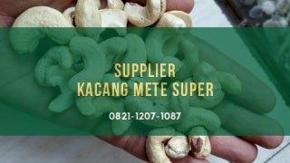 Agen, Distributor, Grosir, dan Supplier Kacang Mete, Mede Super, Utuh, Grade 1, Mentah di Bengkulu, Bima, Binjai, Bitung, 0821-1207-1087