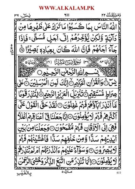 Surat Yasin Arab