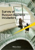 Survey of Russian Business Incubators 2010