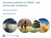 Surveying opinions on REDD+ and community monitoring