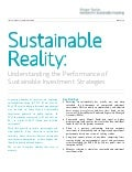 Sustainable Reality: Understanding the Performance of Sustainable Investment Strategies