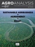 Sustainable Agribusiness + Agroenergy = Brazil