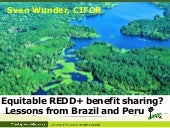 Equitable REDD+ benefit sharing? Lessons from Brazil and Peru