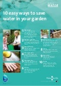 10 Easy Ways To Save Water In Your Garden