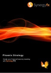 Synergy FX Fund Management - The Phoenix Strategy